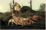 Albino RAD-Skorpion