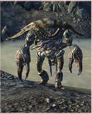 Mirelurk-Jäger