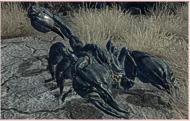 RAD-Skorpion
