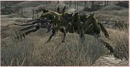 strahlender Ameisenkrieger