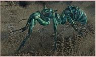 ätzender Ameisenkrieger